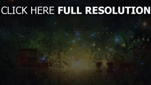 plante forêt éclat luciole