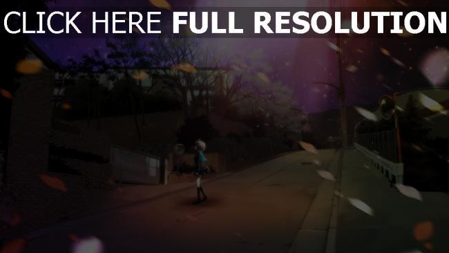 fond d'écran hd rue automne litière de feuilles nuit