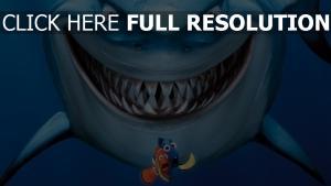 le monde de nemo requin film d'animation