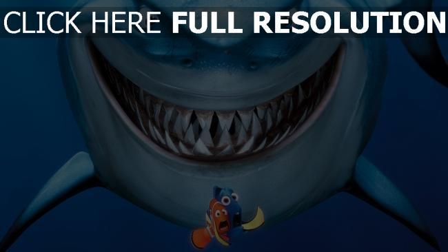 Fond D écran Hd Le Monde De Nemo Requin Film D Animation