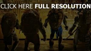 tortues ninja équipe vue de dos