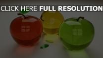fruit réflexion multicolore