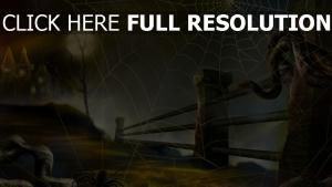 toile d'araignée nuit route