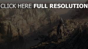 assassin's creed altaïr canyon désert