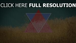 triangle champ blé