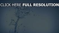 rose éclaboussure eau