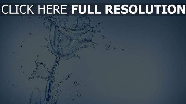 fond d'écran hd rose éclaboussure eau