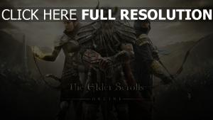 the elder scrolls online guerrier affiche