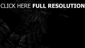 skyrim échelle dragon