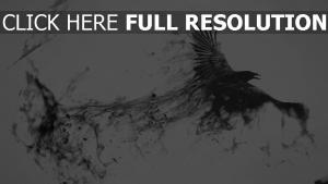 corbeau foncé magie
