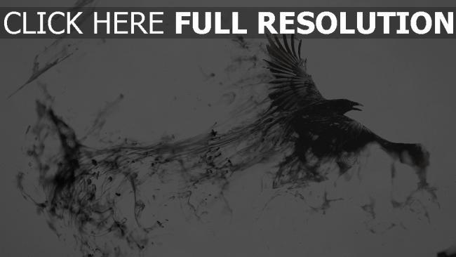 fond d'écran hd corbeau foncé magie
