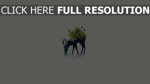 cerf minimalisme arbre