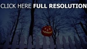 citrouille-lanterne illuminée clôture